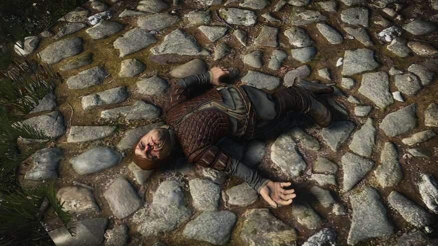 Eleven Great Videogame Easter Eggs From 2014/15 tyrion witcher