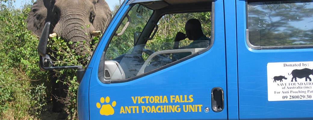 Its Been A Great Year For This Anti Poaching Unit victoria falls anti poaching unit 01