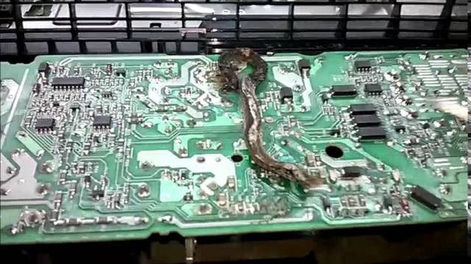 Electrician Finds Worst Thing Imaginable Inside PlayStation 4 2016 05 26 7c sddefault.64924