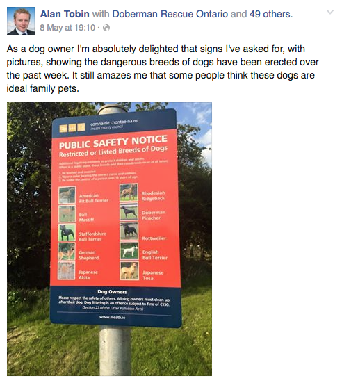 Public Safety Notice: This Irish Politician Is A Danger To Society Screen Shot 2016 05 10 at 10.45.09