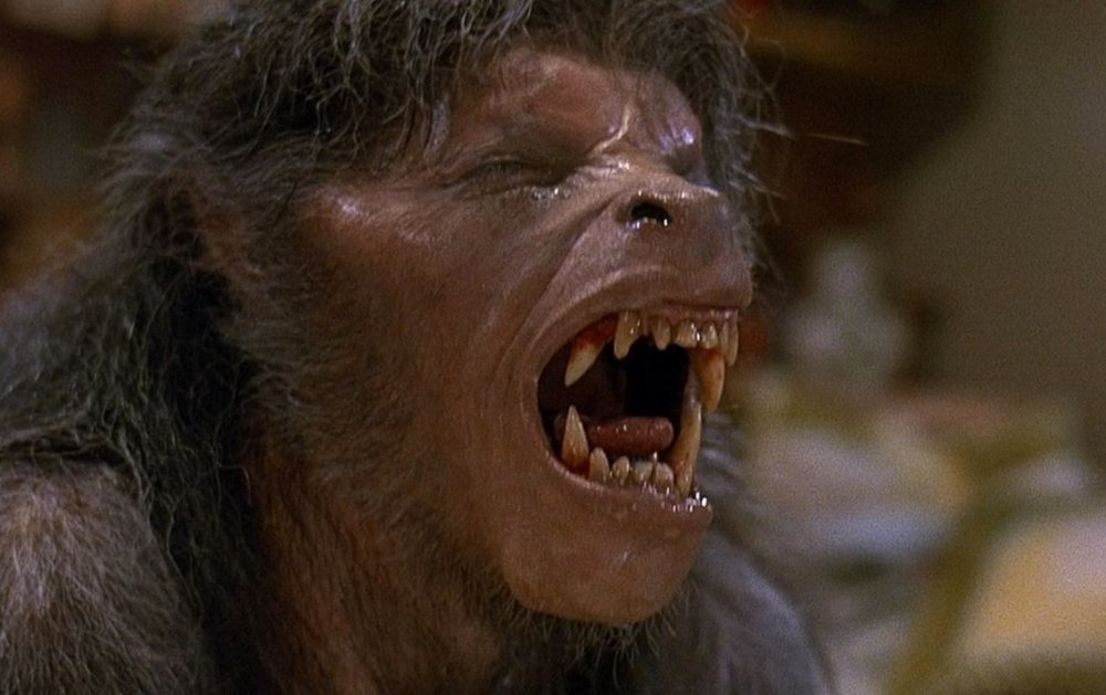 Rock Star Pisses Off Whole City With Werewolf Facebook Question american werewolf in london an 1981 004 wolf groan