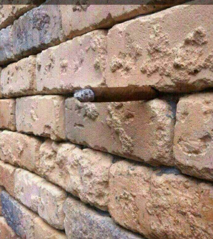 This Is Latest Illusion Confusing The F*ck Out Of The Internet cc830f03573a09b483ef73c03618d95f