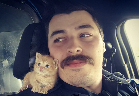 Cop Rescues Abandoned Kitten And Now Theyre A Crime Fighting Duo kitten web thumb