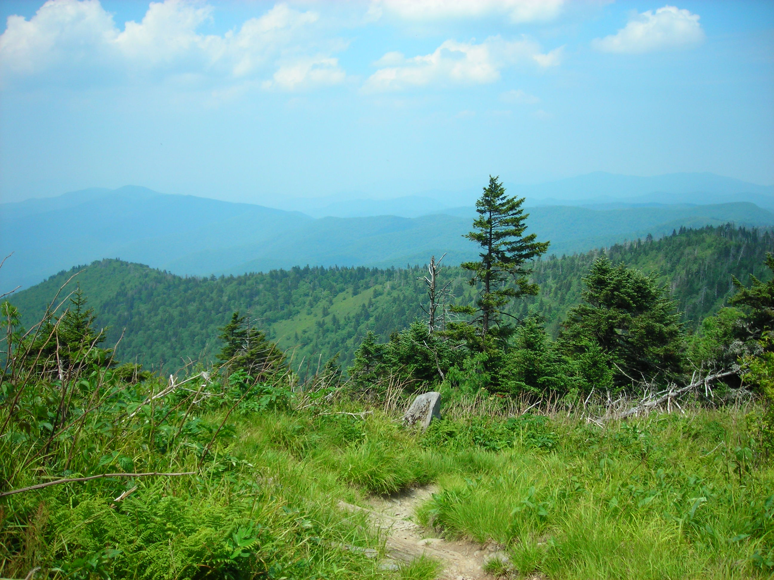 Appalachian_Trail_Heading_to_Double_Springs_Gap_From_Clingman's_Dome