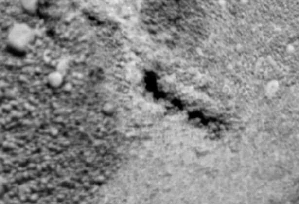 Alien Hunters Claim Theyve Found A Giant Space Worm Living On Mars Something is moving under the surface of Mars