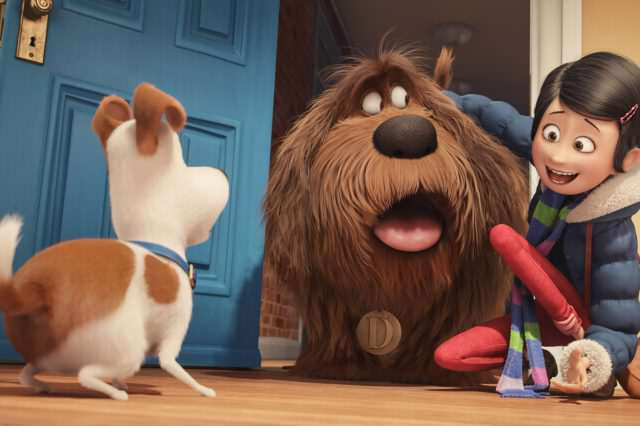 The Secret Life Of Pets: Silly Fun But Far From Purr Fection The Secret Life of Pets trailer 640x426