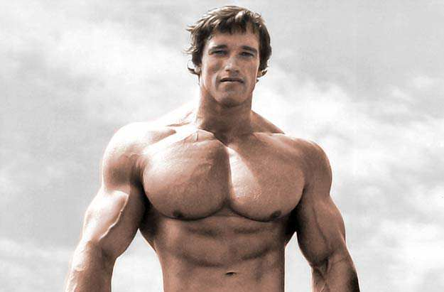 Arnold Schwarzeneggers Tragic Childhood Turned Him Into The Man He Is Today arnie2