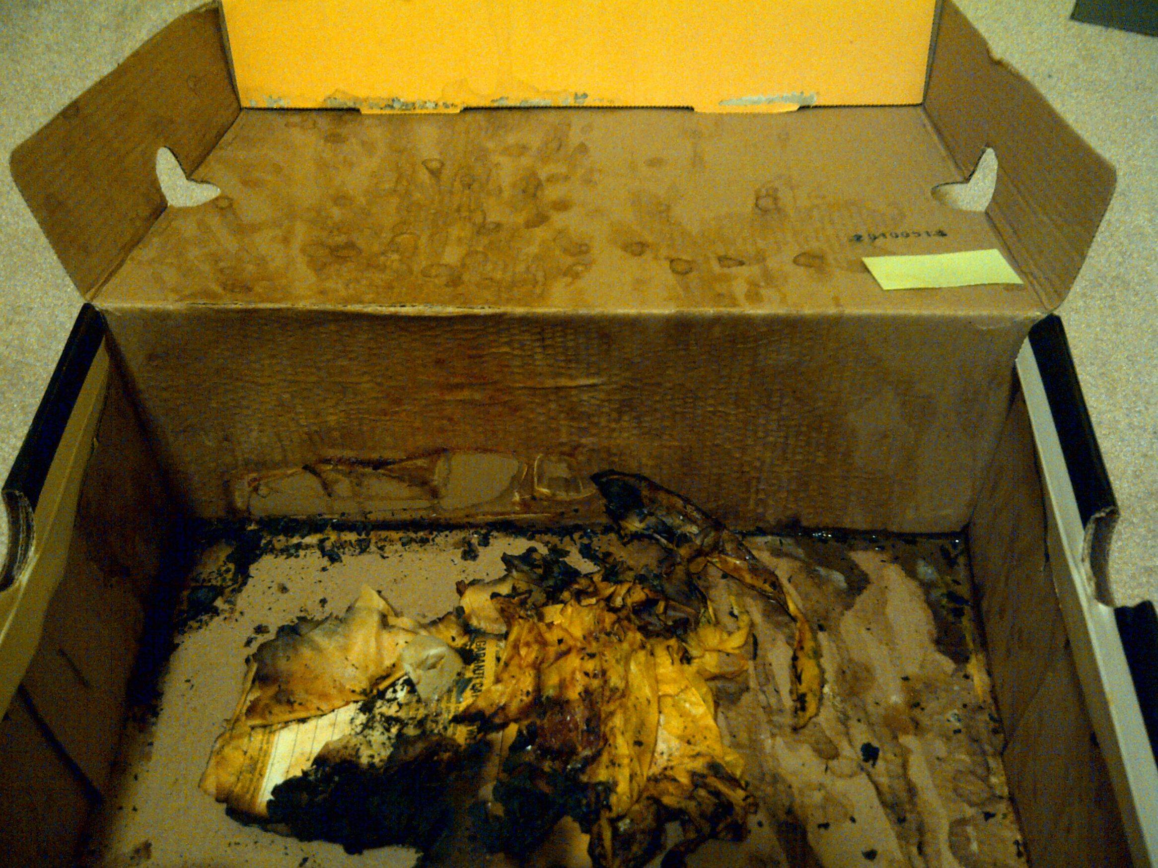 NOPE: This Box Is The Most Hideously Disgusting Thing Ever cumbox