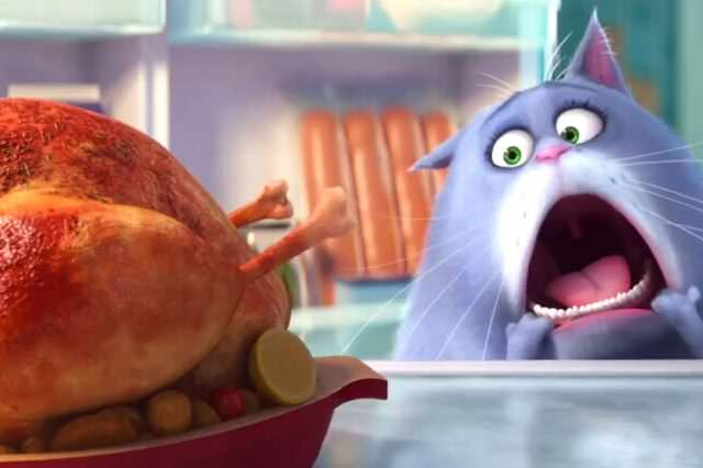 The Secret Life Of Pets: Silly Fun But Far From Purr Fection maxresdefault 23 1 640x426