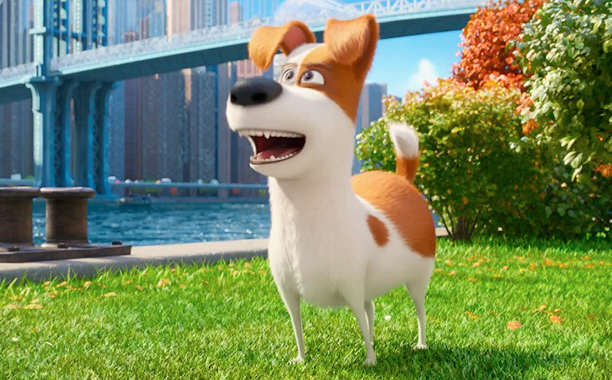 The Secret Life Of Pets: Silly Fun But Far From Purr Fection secret life of pets