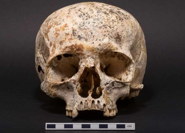 Face Of Mystery Teen Girl Who Died 3,700 Years Ago Finally Revealed 90558425 skullone
