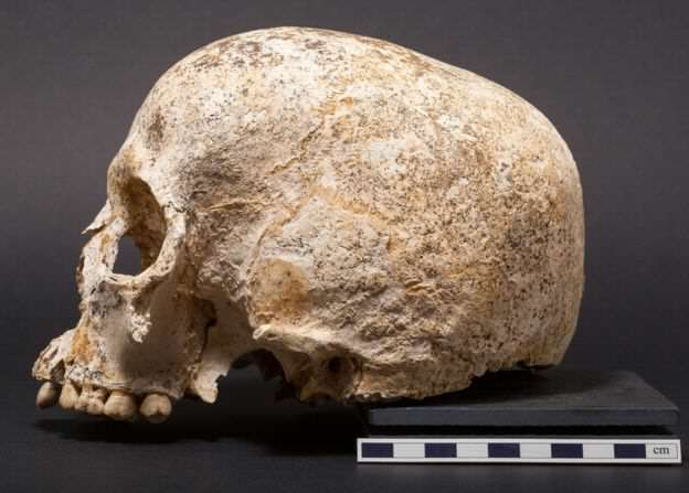 Face Of Mystery Teen Girl Who Died 3,700 Years Ago Finally Revealed 90559105 skulltwo