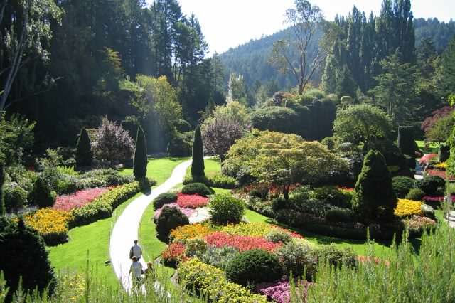 People Whove Come Back From Dead Reveal Whats On Other Side Butchart gardens 640x426