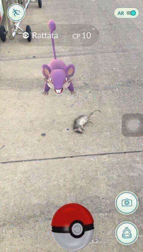 Pokemon GO Has Pokemon Turning Up In Some Weird Places Qn7Vxqp 1