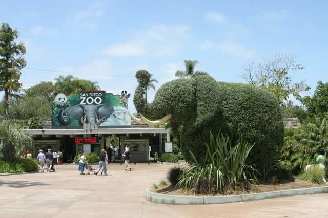Prankster Brilliantly Trolls Zoo With Made Up Animal Facts San Diego Zoo entrance elephant 640x426