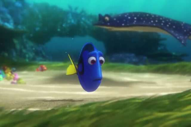 Finding Dory Found Its Way Into Our Hearts findingdory6 640x426