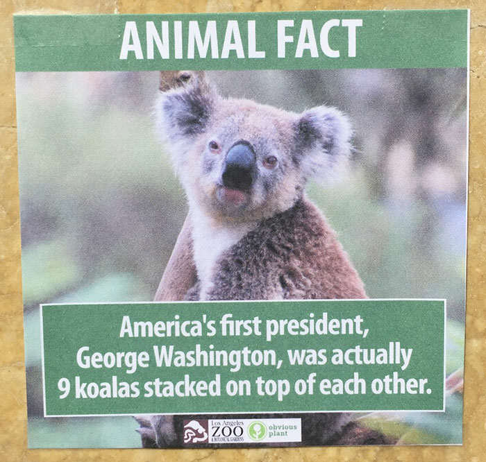 Prankster Brilliantly Trolls Zoo With Made Up Animal Facts funny animal facts fake los angeles zoo obvious plant 1 5776743b0fd2b  700