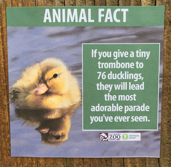 Prankster Brilliantly Trolls Zoo With Made Up Animal Facts funny animal facts fake los angeles zoo obvious plant 6 577674490c7b7  700