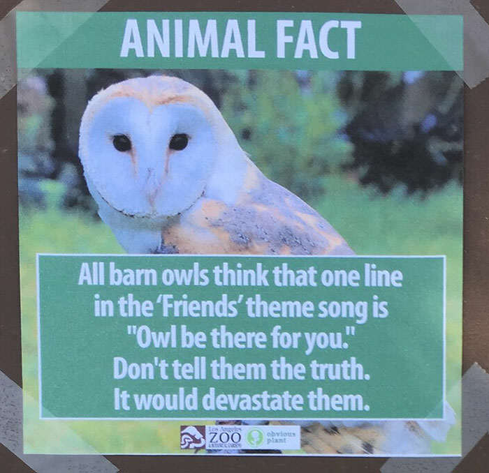 Prankster Brilliantly Trolls Zoo With Made Up Animal Facts funny animal facts fake los angeles zoo obvious plant 8 5776744fca78e  700