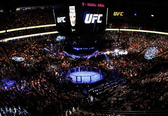 UFC Sold In Largest Franchise Sale In Sports History sale1