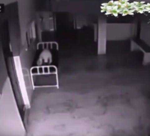 Eerie Hospital Footage May Prove We All Have Souls vid 1 5
