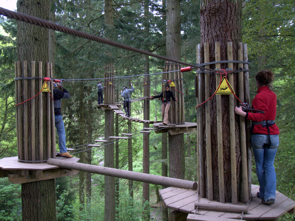 Woman Plunges 40ft To Death After Falling From Zip Line Attraction 4644615888 4189aec6cc b