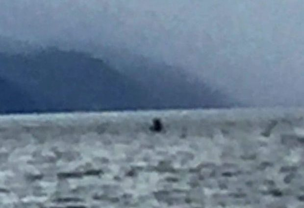 New Tourist Photos Of The Loch Ness Monster Emerge nessie 2 620x426