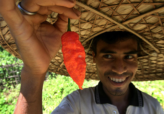 Heres How To Deal With Eating Spicy Food Chilli web