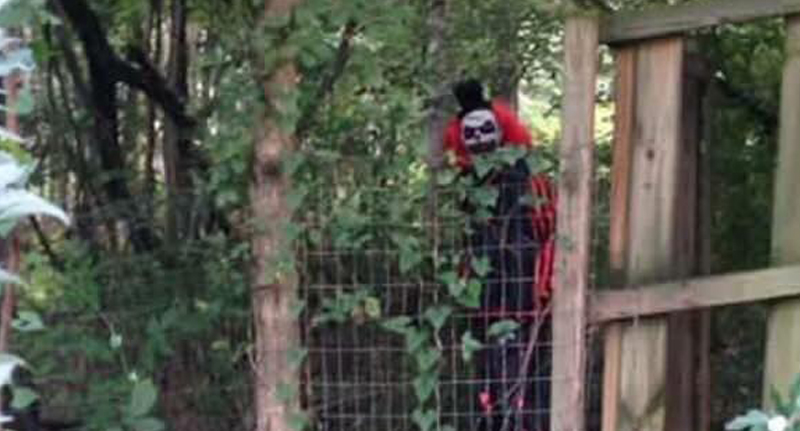 Creepy Clown Posts Chilling Video Message To Local Kids CreepyClownVirigina