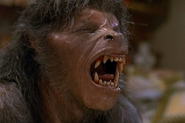 Terrified Woman Claims to Have Seen An 8 Foot Tall, Fanged Werewolf american werewolf in london an 1981 004 wolf groan 640x426