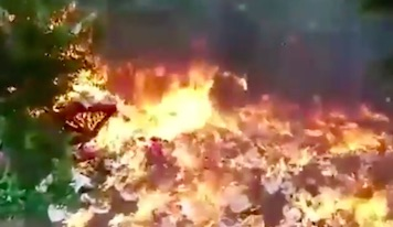 Guy Destroys Garden With Massive Explosion In Bizarre Stunt Gone Wrong bomb3