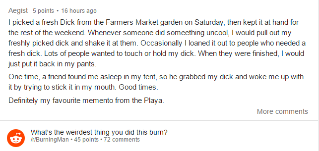 People Did Some Weird Sh*t At Burning Man Festival This Year reddit4