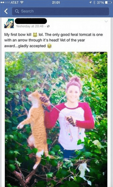 Vet Of The Year Posts Sickening Photo After Killing Neighbours Cat With Arrow 30583UNILAD imageoptim Screen Shot 2016 10 19 at 18.17.41