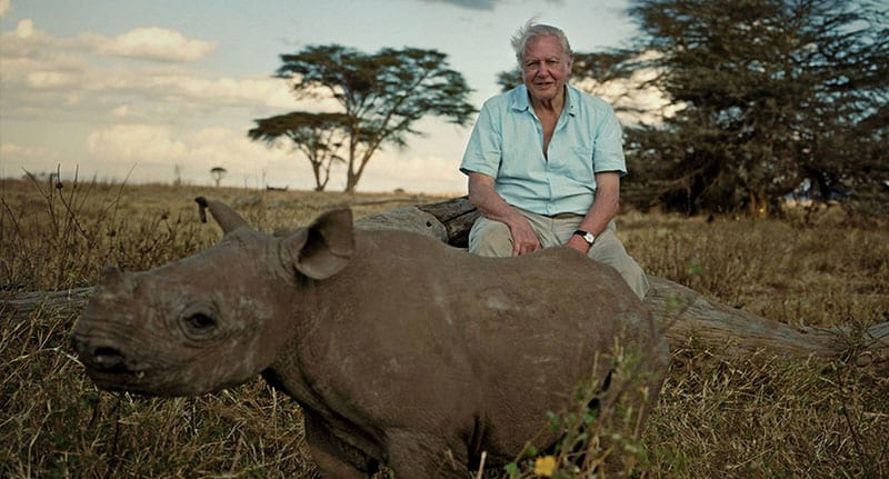 David Attenborough Is Back With Planet Earth 2 And The Trailer Looks Amazing 44243UNILAD imageoptim planetearth fb