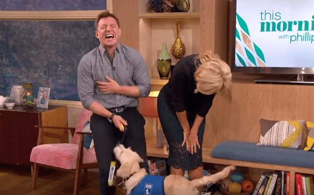 Holly Willoughbys X Rated This Morning Blunder Leaves Viewers In Tears 45272UNILAD imageoptim willy1