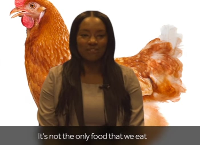 BBC In Racism Sh*tstorm For This Fried Chicken Video 214UNILAD imageoptim Chicken5