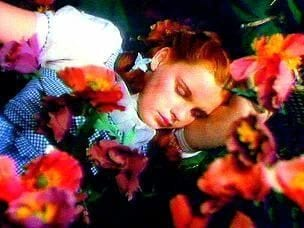 Napflix Is The Video Streaming Service That Helps You Sleep 32989UNILAD imageoptim Dorothy sleeping amongst the poppies the wizard of oz 4284313 304 228