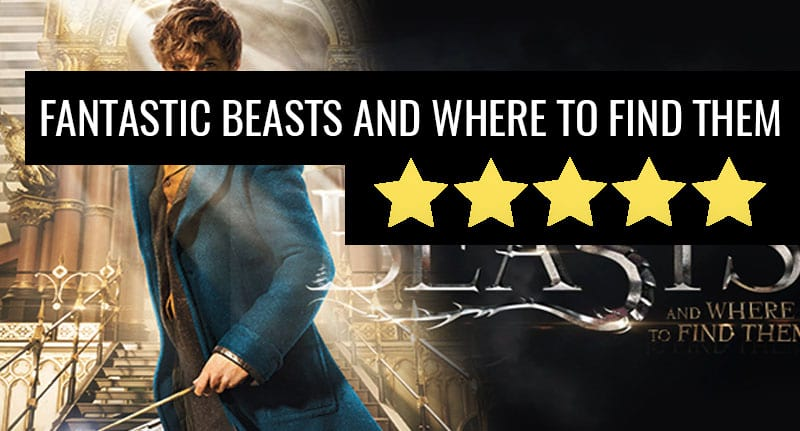 Fantastic Beasts Is A Delightful Introduction To The U.S. Wizarding World 37564UNILAD imageoptim fant review