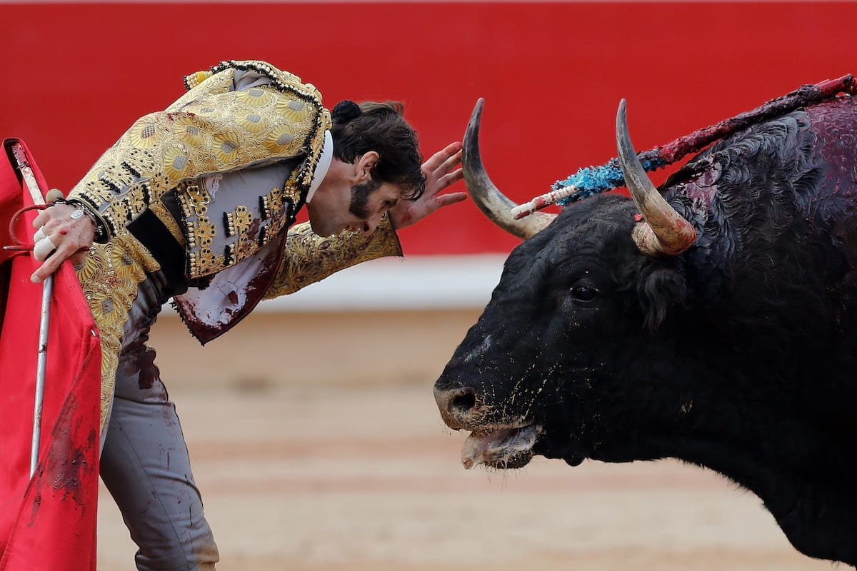 This Is Why Barcelona Cant Ban Bullfighting 39471UNILAD imageoptim bullfight1