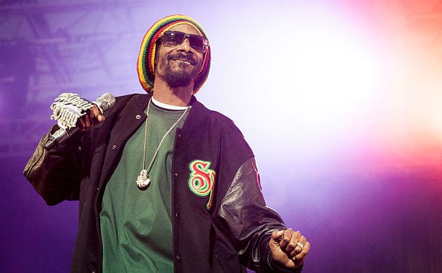 Snoop Dogg And Patrick Stewart Invest $10 Million In British Weed Company 49836UNILAD imageoptim 640px Snoop Dogg performing at Hovefestivalen 2012