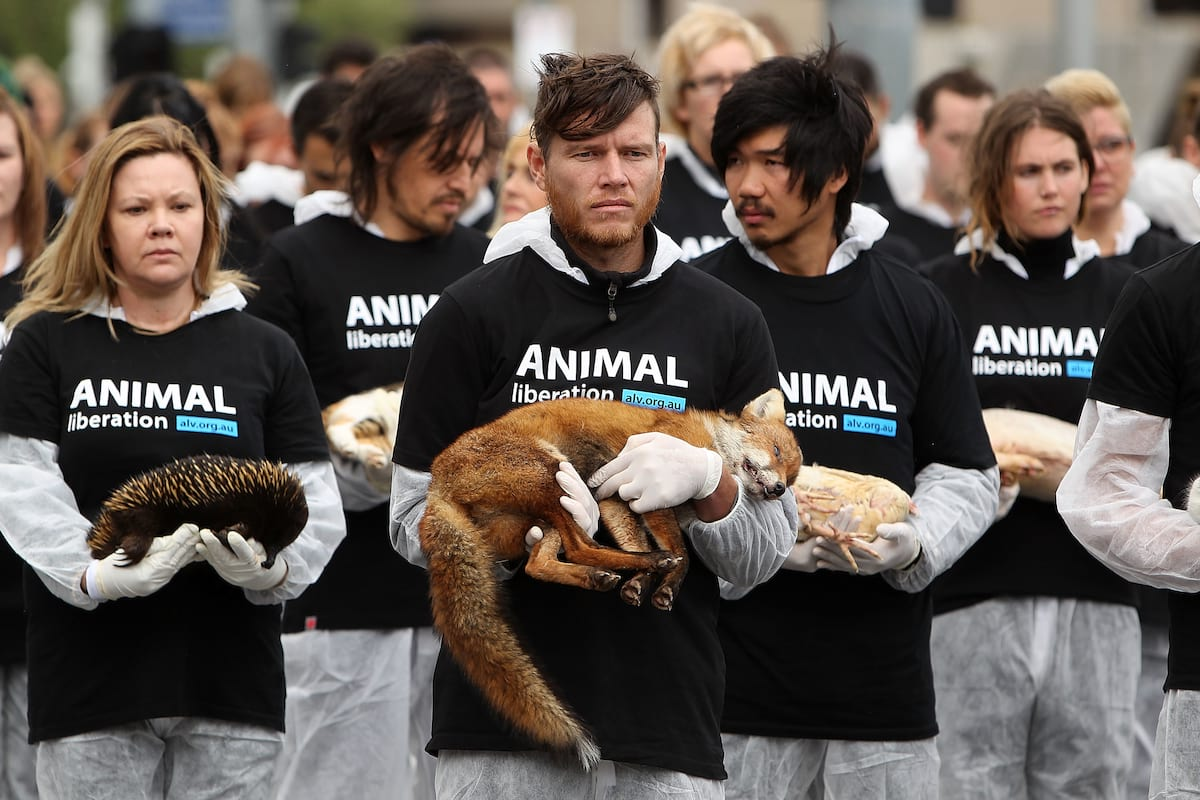 Vegans And Vegetarians Actually Help Kill Animals, Heres How 62417UNILAD imageoptim GettyImages 182567271