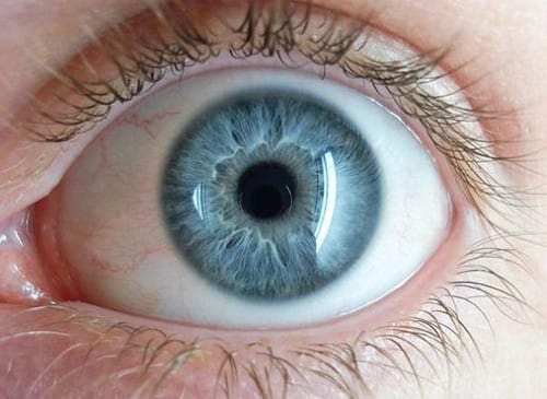 Everyone With Blue Eyes Has One Thing In Common