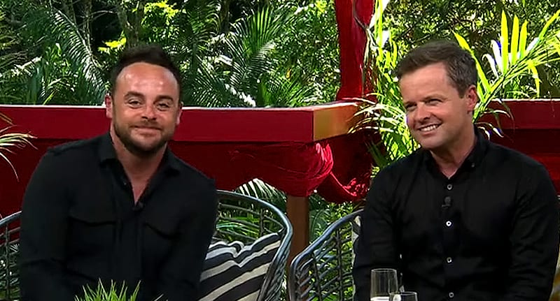 Ant And Dec Will Present Im A Celeb Together This Year 23944UNILAD imageoptim ant and dec stephen hawking body
