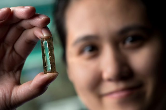 Student Invents Phone Battery That Can Last 400 Years 51599UNILAD imageoptim all powered up 640x426