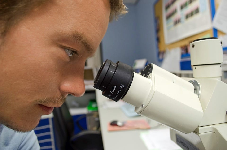 Cancer Could Soon Be Wiped Out Thanks To New Breakthrough Discovery 293 people 219985 960 720