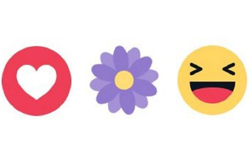 Heres Why Youre Seeing A Little Purple Flower Appear On Facebook Flower