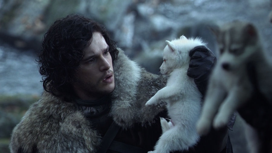 Jon-Snow-and-Young-Direwolf-Ghost