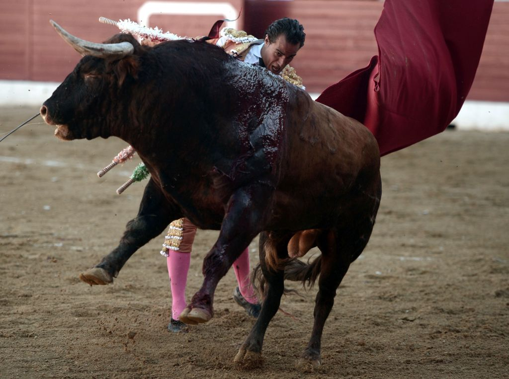 Matador Is Gored To Death By Bull After Fatal Slip In Ring GettyImages 697000834