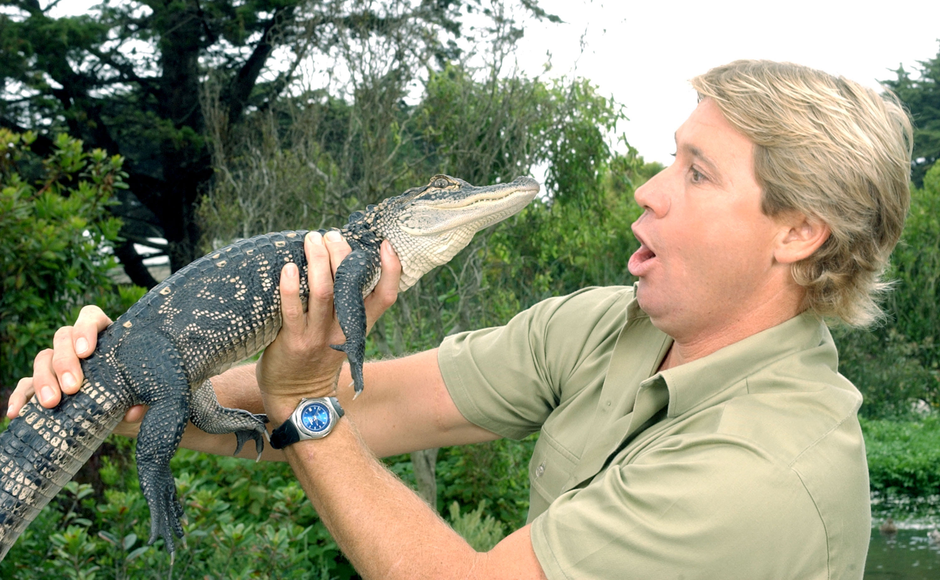 Steve Irwin Reveals One Animal He Refused To Wrangle In Rare Footage GettyImages 1129395