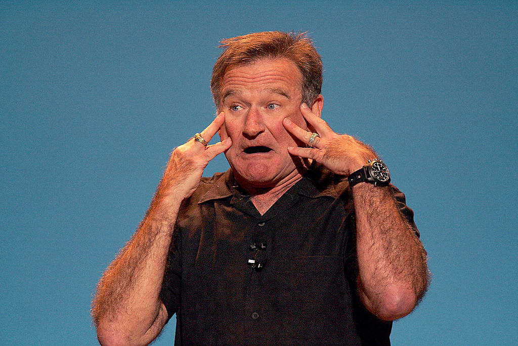 Robin Williams In Concert